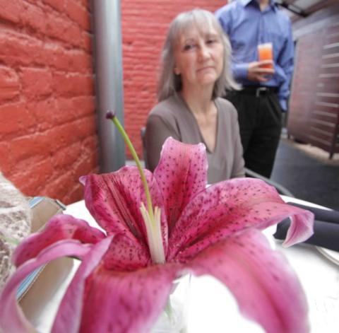 paggi house lily