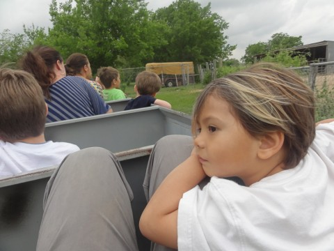 train ride at kiddie acres