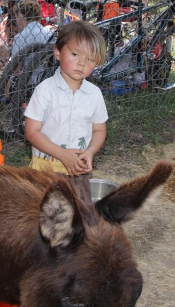 donkey eeyore at austin pease park 2012