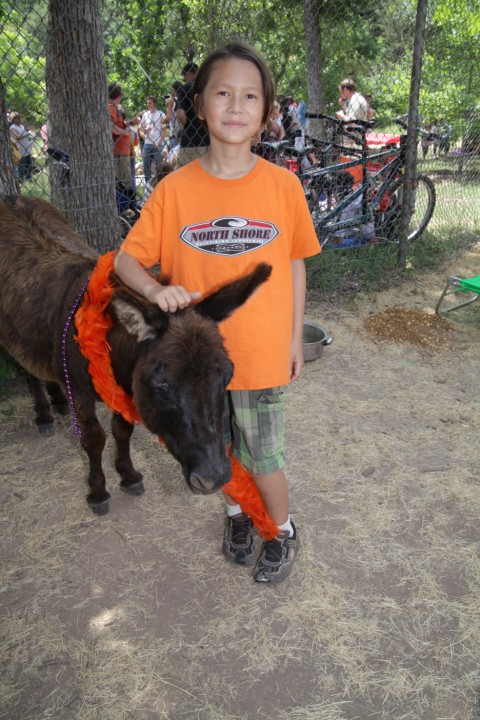eeyore donkey birthday party pease park austin 2012
