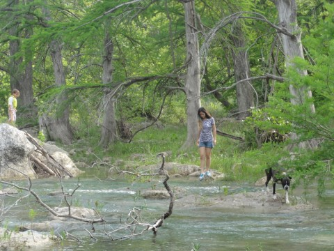 eichler the boxer explores the blanco river 2012