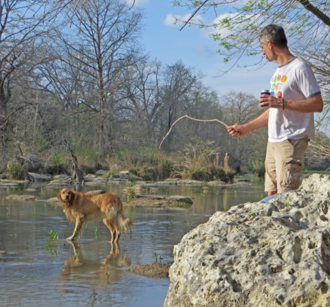 dog playing fetch the stick in blanco river wimberley