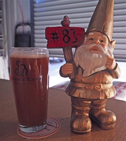 disco gnome at strange land brewing westlake austin