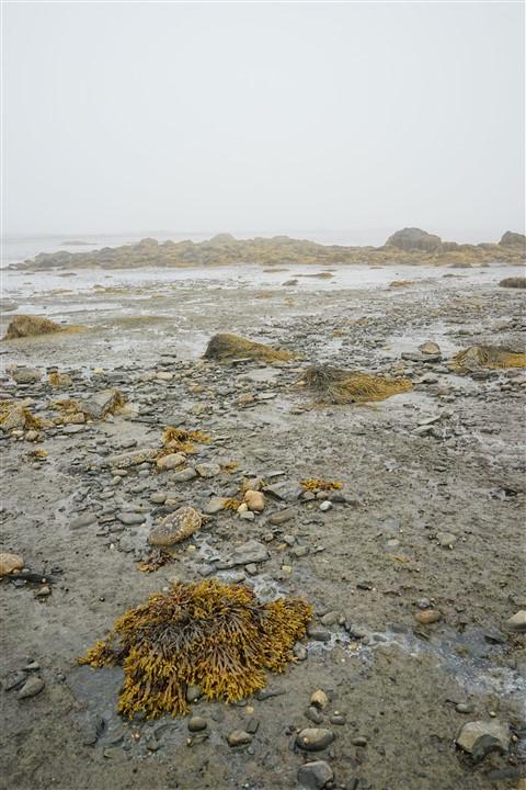 low tide yarmouth sandy beach nova scotia
