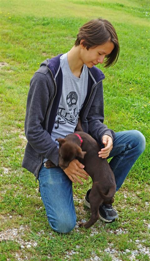 farm puppy nebraska
