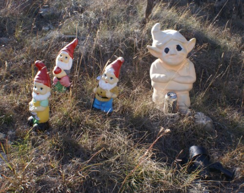 sun bleached gnome gathering