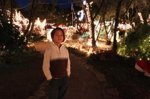 wimberley trail of lights