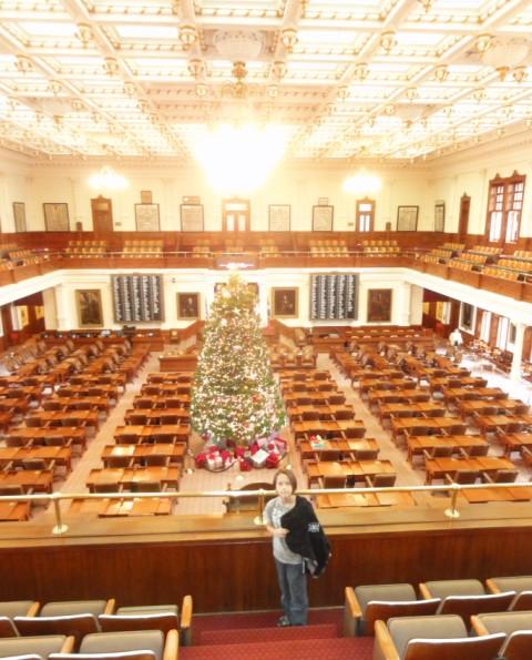 texas house of representatives christmas tree