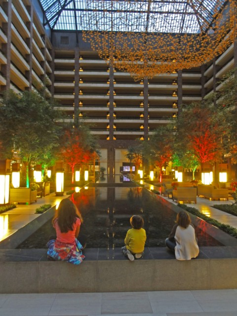 kinetic sculpture and reflecting pool in an atrium section of the anatole
