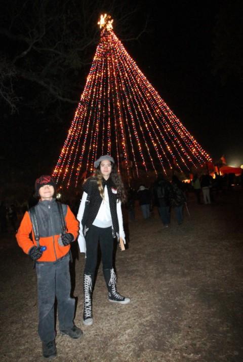zilker christmas tree austin