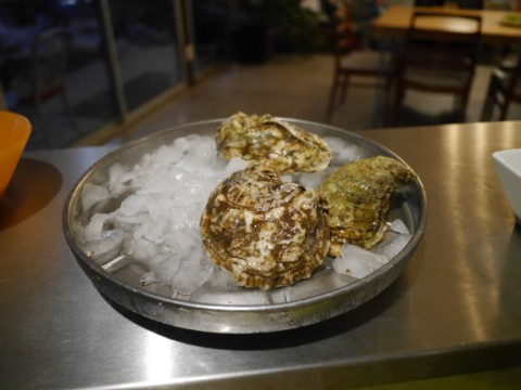 blue point bluepoint oysters from CT central market austin
