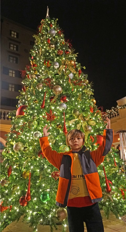 hotel granduca austin westlake christmas tree