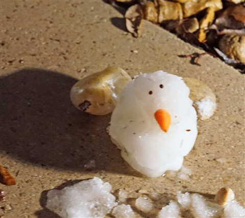 snowman austin 2017