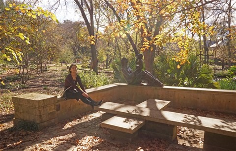 umlauf austin winter 2017