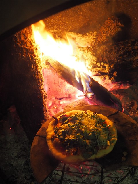 wood fired pizza wimberley midcentury modern fireplace