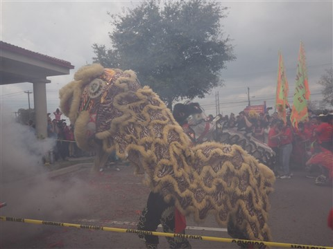 lion dancers chinatown austin new lunar year