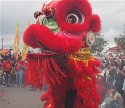lion dancers chinatown new year celebration austin 2015