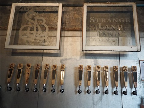 strange land brewery west lake hills austin 78746