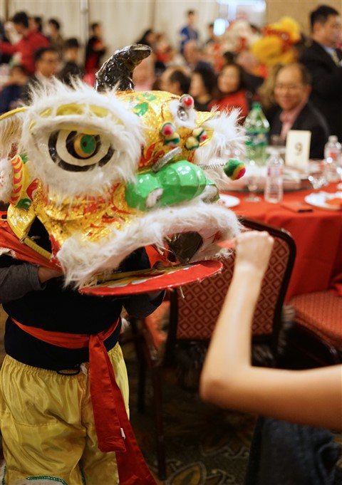 chinese socity of austin summit lion dance