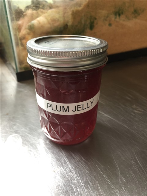 home made plum jelly from Vermont Jeffersonville Norm!