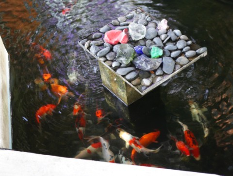koi pond austin west lake hills