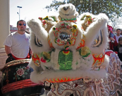 being intimadated by chinese lion dancer austin tx
