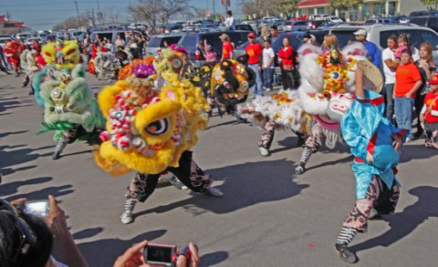 gung hay fat choy lion tamer austin tx usa chinese new years