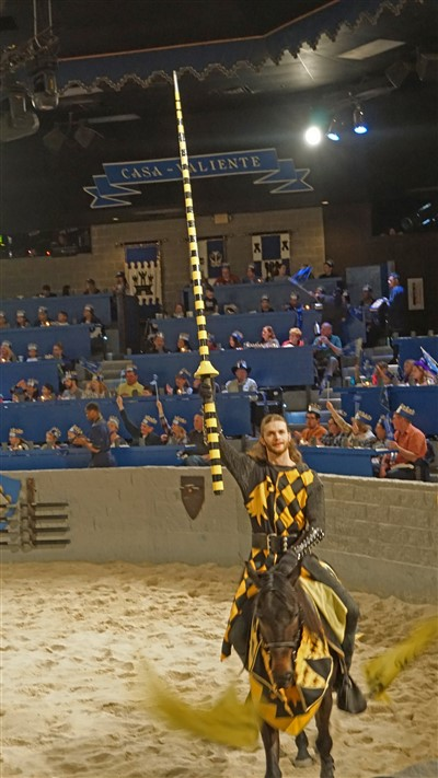 yellow knight medieval times dallas dec 2016