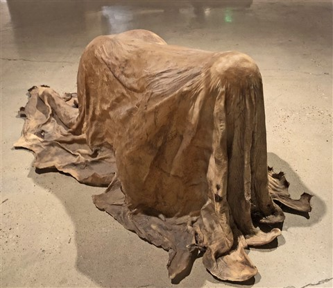 Janine Antoni  at contemporary art jones center austin