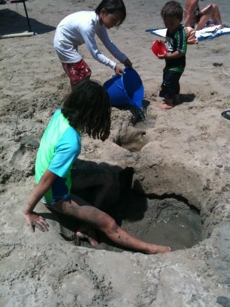 soil sample along gulf of mexico beach