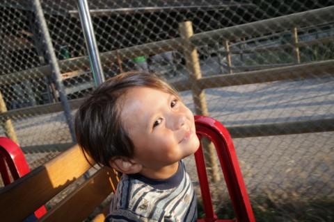 lincoln children's museum train ride