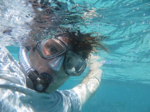 snorkel dork kona hawaii