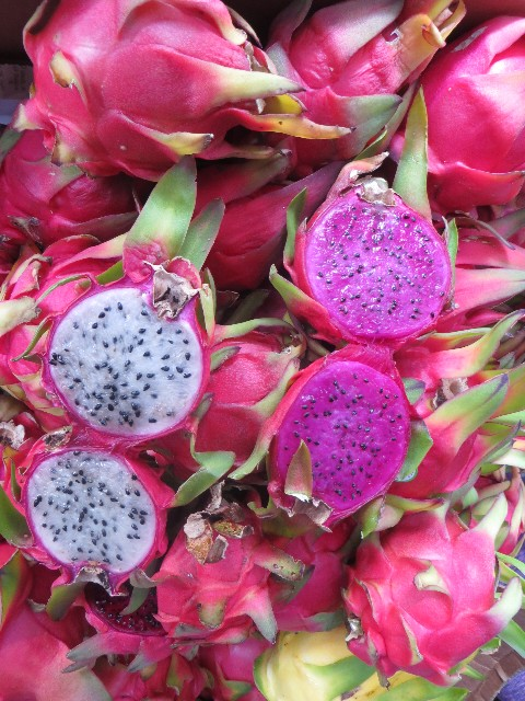 dragon fruit kona hawaii