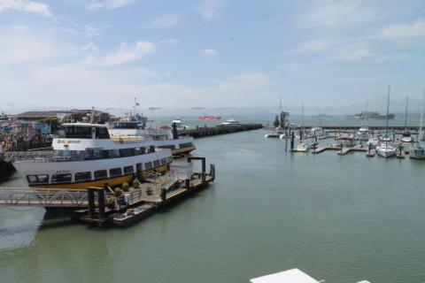 fisherman's wharf pier 39 from Fog Harbor fish co