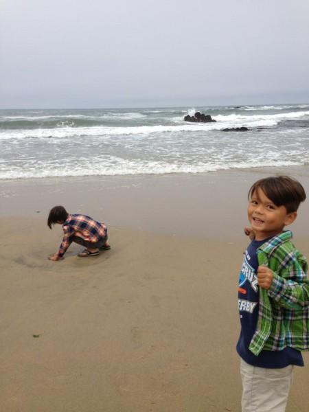 Pescadero state beach ca