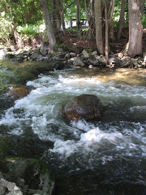 barton river glover vt NEK