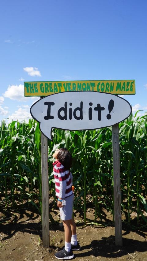 great vermont corn maze 2018 success
