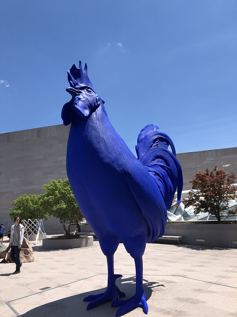 giant blue cock washington DC gallery of art