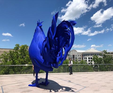 big blue cock national gallery dc art