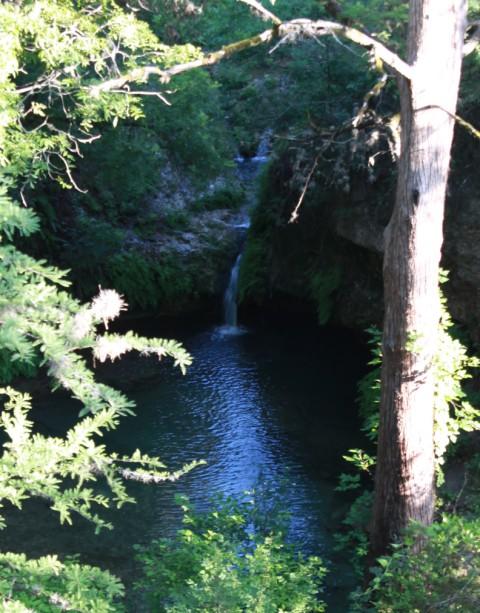 twin falls pedernales