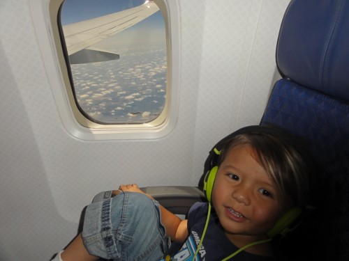 american airlines toddler