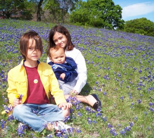 central texas blue bonnets