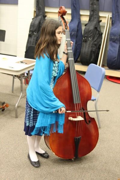 upright string bass