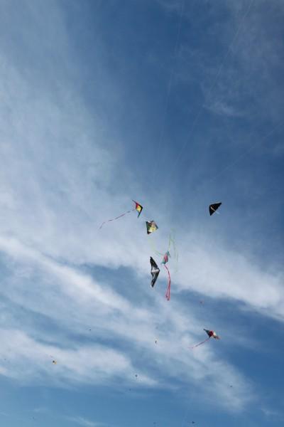 kite-tastrophy