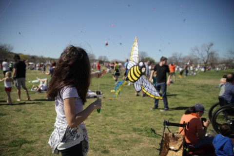 bee kite zilker march 2012