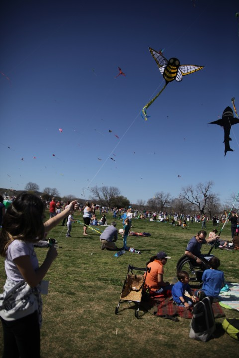 our bee kite takes flight zilker park austin