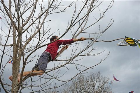 zilker kite festival rescue 2016