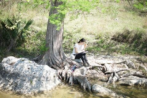 blanco river rapids hoa water park wimberley fischer