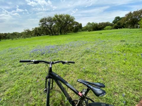 spring 2020 virus bike zilker park austin bluebonnets