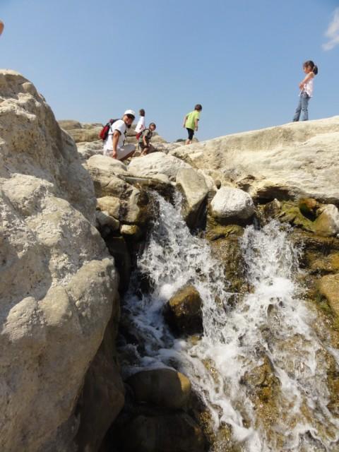 pedernales falls amh hike